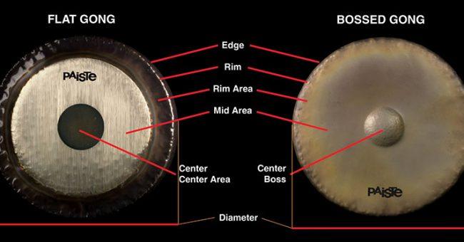 gong-anatomy